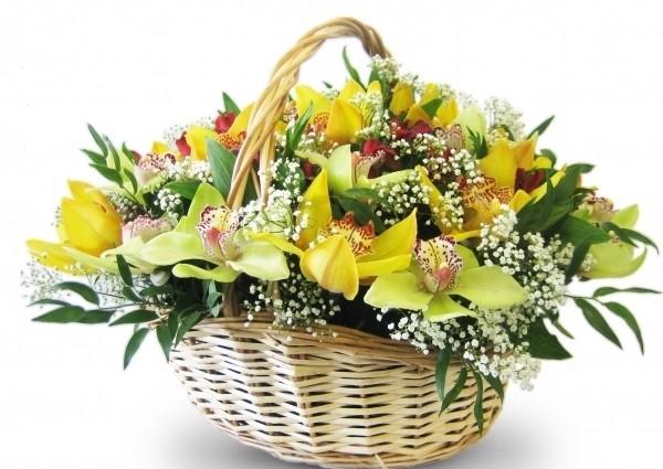 Цветы Гранд Флора GF-ckod02 сенсорные купить до 2000 грн