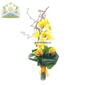 Мадам ВОНГЭлегантная композиция из золотистых орхидей Сакура - это уникальное творение опытных флористов Гранд Флора. Букет из орхидей, стремительно направленных вверх и уютно уложенных на сочных листьях аспидистры, напоминает нам лестницу успеха, каждая ступ...<br>
