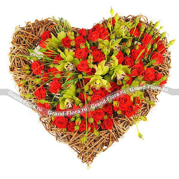 Цветы Гранд Флора GF-ser017 розы для любимой