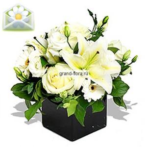 Лунный светЭта композиция не просто удивляет своей красотой и нежностью, она ослепляет своей чистотой и величием. Только профессионалы могли создать такое чудо, и мы с радостью сообщаем, что этот прекрасный букет цветов создан руками опытных флористов междунар...<br>