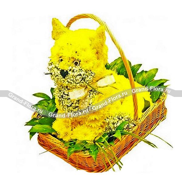 Кошечка из хризантем от Grand-Flora.ru