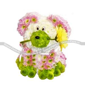 Собачка с цветкомОформление заказа на доставку композиции в виде игрушки на сайте Grand-flora.ru возможно за 3 дня до даты доставки. Если Вам необходима срочная доставка - уточнить информацию Вы можете у менеджера по телефону 8 988 744 46 44 или 8 800 333 01 95.<br>Вы...<br>