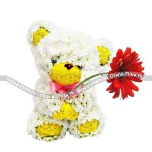 Медвежонок с цветкомОформление заказа на доставку композициив виде игрушки на сайтеGrand-flora.ru возможно за 3 дня до даты доставки. Если Вам необходима срочная доставка - уточнить информацию Вы можете у менеджера по телефону 8 988 744 46 44 или 8 800 333 01 95.<br>Ко...<br>
