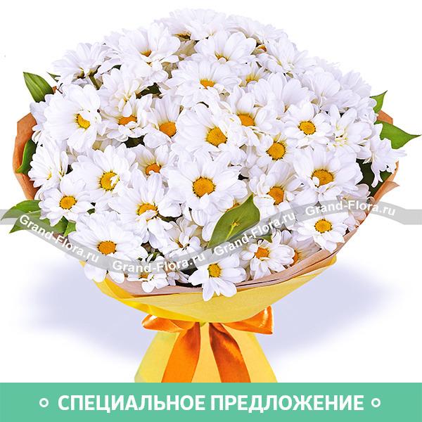 Нежное признание - букет из кустовых хризантем
