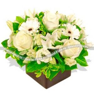 ПинаколадаПинаколада - это самая грациозная и нежная композиция на оазисе, которая прекрасно сочетает в себе очаровательные белоснежные цветы. В состав Пинаколады входят розы, лилии и герберы, окаймленные сочными зелеными листьями.<br><br>Доставку Пинаколады ...<br>