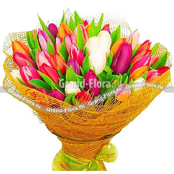 Восхищён тобой! - букет из разноцветных тюльпанов