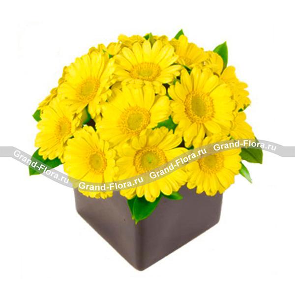 Композиция солнечно желтых гербер