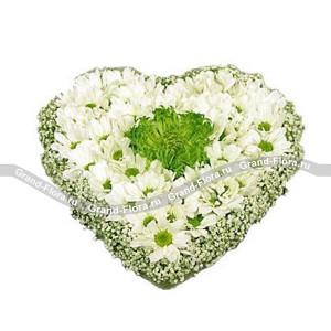 Сердце ангела - композиция на оазисе в виде сердца из хризантемы и гипсофилы