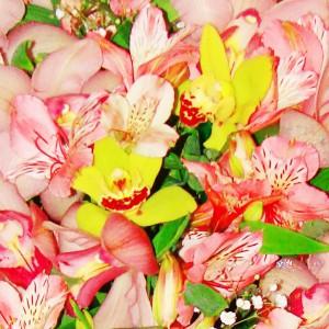Французский ШармГлавное в этом букете – это его цвет. Нежнейшие альстромерии розового оттенка сразу дарят романтичное настроение и будут отличным подарком кокетливой особе, с истинно французским шармом и непосредственностью. Превосходны для первого свидания ил...<br>