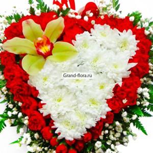 Сердце Аполлона от Grand-Flora.ru