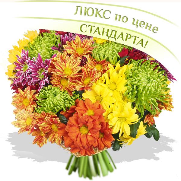 Осенний блюз - букет из разноцветных хризантем