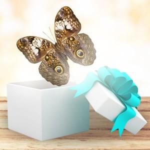 Бабочка КалигоКалиго (Caligo Eurilochus). Размер - 16-17 см. Это ночная бабочка, точнее сумеречная. Активна она обычно на закате. Нижняя часть крыльев имеет глазки очень похожие на глаза совы, а также сильно напоминает кожу змеи. Такая окраска помогает ей отпуг...<br>