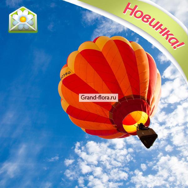 Подарочные сертификаты Гранд Флора Полет на воздушном шаре (аэростате) фото