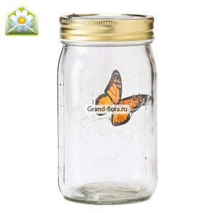 Бабочка в банке Желтый парусникКак ведёт себя электронная бабочка в банке:<br>1. Если бабочку не трогать, она спит. Крылышки сложены, сама она неподвижна.<br>2. Как только раздаётся громкий звук (например, голоса вошедших в комнату людей), бабочка просыпается и начинает летать по бан...<br>