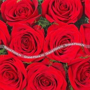 Монобукет из красных роз - История любвиВеликолепная композиция, выполненная на оазисе из красных роз в виде сердца. Идеальный подарок, который расскажет все о Ваших чувствах....<br>