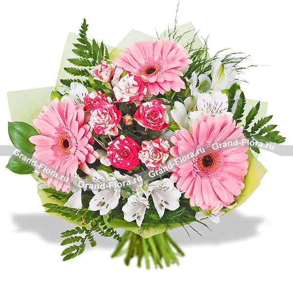 Цветы Гранд Флора Спасибо за заботу - букет из розовых гербер и альстромерии фото