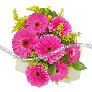 Вдохновение цветом - букет из гербер и солидагоГербера – удивительный цветок. Он способен отводить от грустных мыслей, настраивать на позитивный лад, вселять надежду на прекрасное будущее. Букеты с герберами приносят счастье и удачу в начинаниях, это отличный подарок коллеге, подруге, любим...<br>