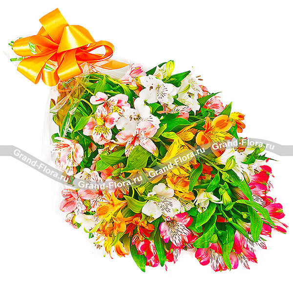 Акварельный набросок - букет из разноцветных альстромерий
