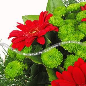 Спасибо, что ты есть!Обворожительный букет с безумно яркими, пылающими герберами. Эти цветы символизируют солнце, улыбку, а также выражают свою симпатию от дарителя. Удачно вписанные хризантемы и листочки зелени создают гармоничный контраст красного с зеленым. Хриз...<br>
