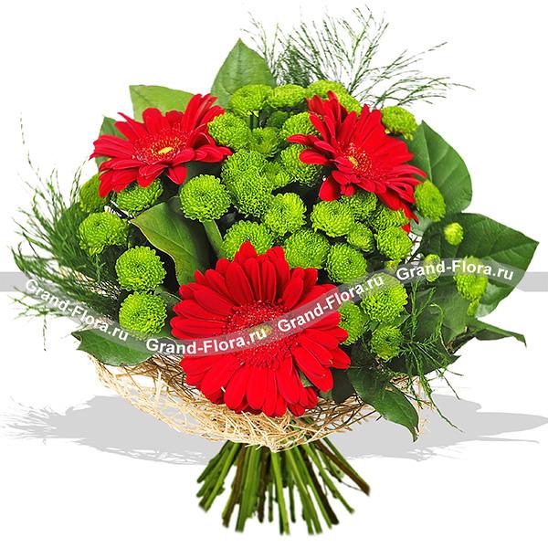 Спасибо, что ты есть! - букет из гербер и кустовой хризантемы