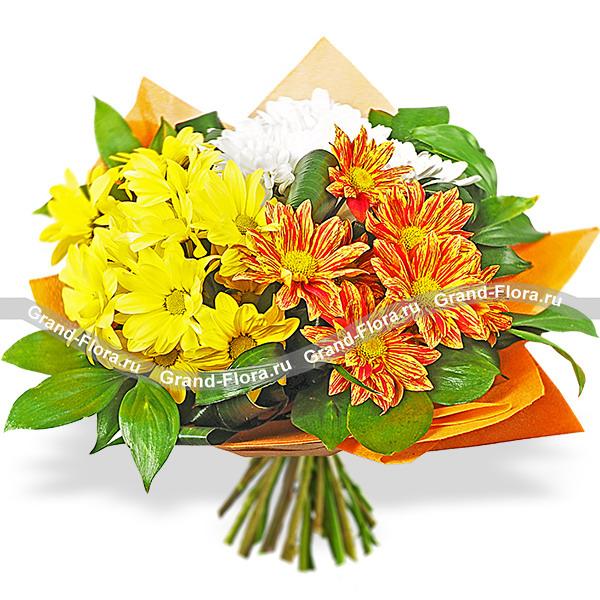 Солнечные блики - букет из разноцветных кустовых хризантем