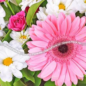 """Глоток романтикиВся прелесть букета заключена в изящных герберах, пышных розах и нежных, девичьих хризантемах. Букет станет изысканным знаком внимания молодой девушке. Он поможет выразить светлые, зарождающиеся чувства. Белый цвет говорит: """"ты мне нравишься"""", ...<br>"""