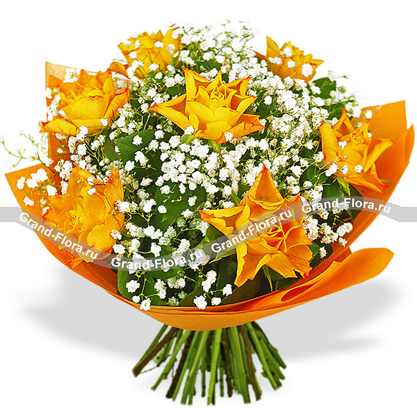 Розы оранжевого цвета - Млечный путь
