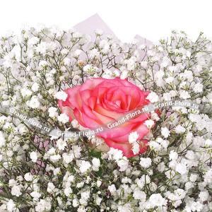 Розовая роза с гипсофилой - Любовь принцессы
