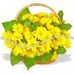 Очаровательная корзина из жёлтых ромашковых хризантем