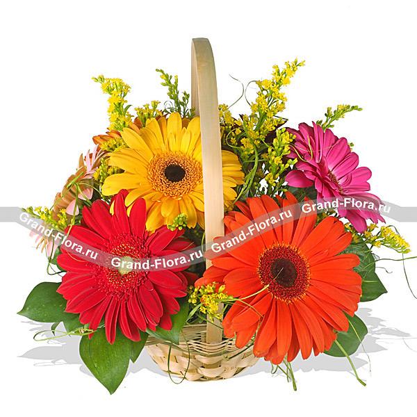 Цветы Гранд Флора GF-n-gk009 gf go7700t n b1