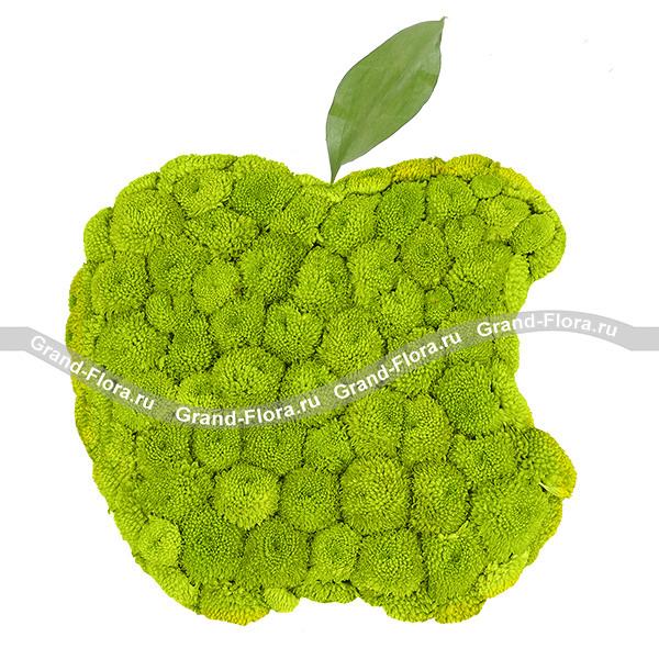 Композиция в форме яблока Apple