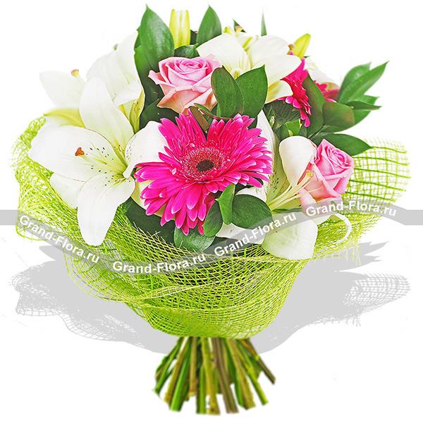 Розовая роза (Аква) и малиновые герберы - Загляденье