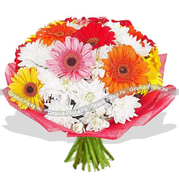 Новинки Гранд Флора Глория - букет из разноцветных гербер и хризантемы фото