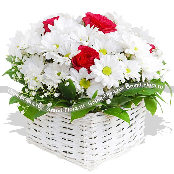 Эффектная композия из белых хризантем и красных роз