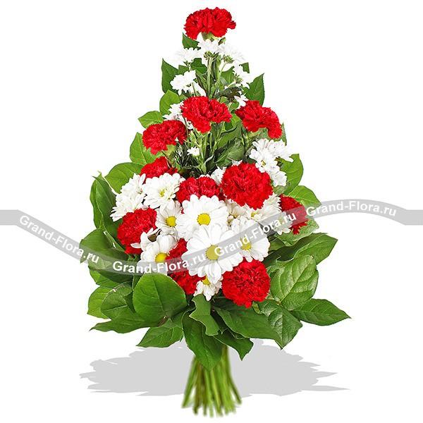 Букет из красных гвоздик и белых кустовых хризантем