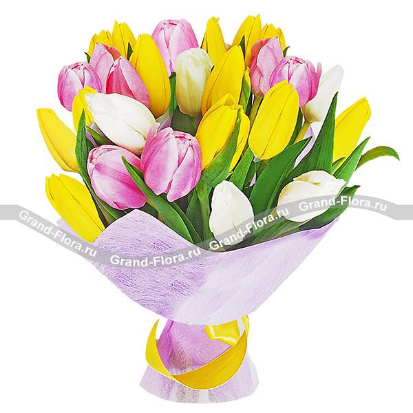 Утренняя нежность - букет из разноцветных тюльпанов