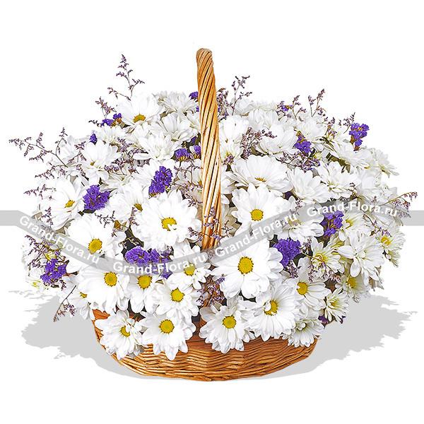 Безупречная красота - корзина с кустовой хризантемой и статицей