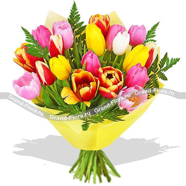Хорошее настроение - букет из разноцветных тюльпанов
