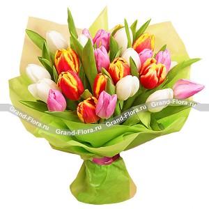 Самой обаятельной - букет из разноцветных тюльпанов разноцветное настроение букет разноцветных тюльпанов