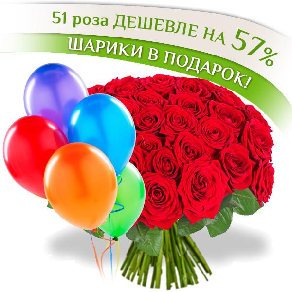 51 роза + шары