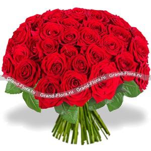 51 красная роза - букет из красных розХотите подарить своей любимой самое страстное любовное признание? Международная служба доставки цветов Grand-flora.ru предлагает вам идеальное решение – шикарный букет из роз Сто и одна роза. Только посмотрите на этот невероятно красивый и величеств...<br>