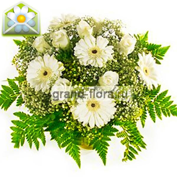 Цветы Гранд Флора Быть может да? фото