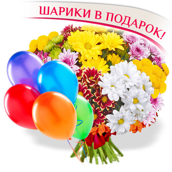 Осенние каникулы - букет из разноцветных хризантем + воздушные шары