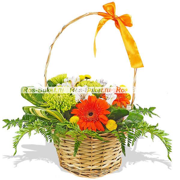Венера - букет из гербер и хризантем