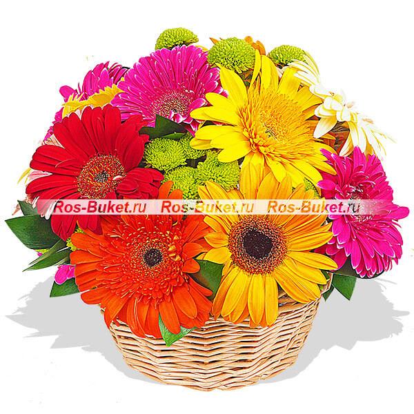 Цветы Гранд Флора GF-p-422 acv gf 422