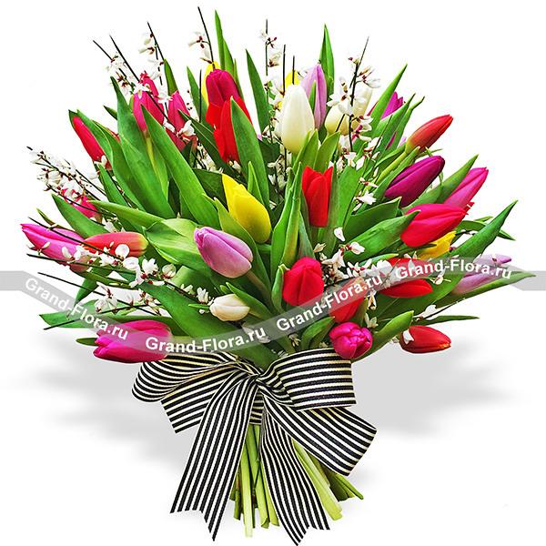Тюльпаны Гранд Флора О нас снимут фильмы - букет из разноцветных тюльпанов фото