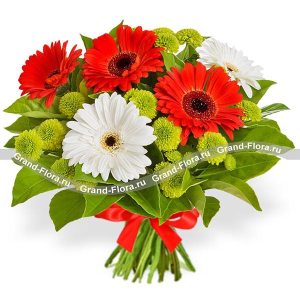 В твоих объятиях - букет из разноцветных гербер от Grand-Flora.ru