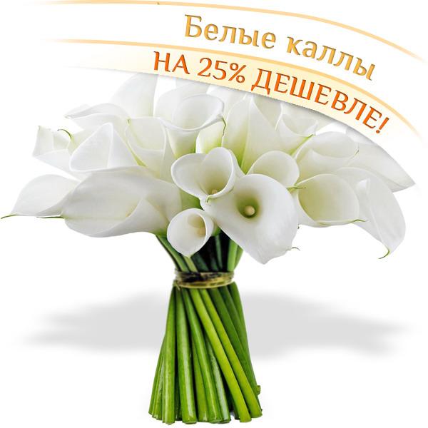 Цветы Гранд Флора GF-2453 цветы гранд флора gf p 407
