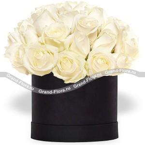 Айсберг - букет из белых роз в коробке