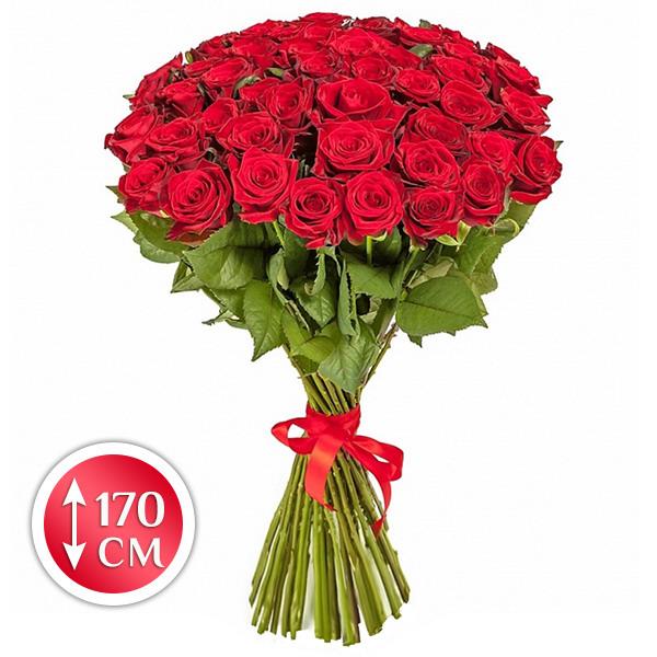 Королевский презент - букет из роз